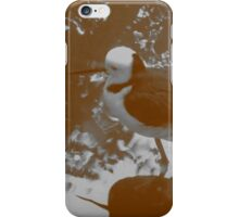 Black-winged Stilt - Sepia iPhone Case/Skin