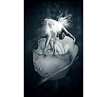 Rose fairy Photographic Print