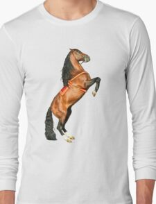 Andalusian Stallion Long Sleeve T-Shirt