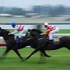 Racing away by Graham Mewburn