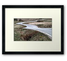 21.5.2015: Coltsfoot Flowers at the Side of the Road Framed Print