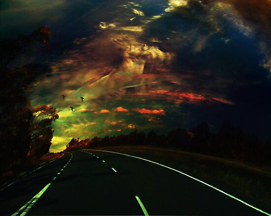 The lost highway by Colleen Milburn