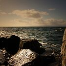 A VIEW OF THE OCEAN by leonie7