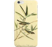 James Audubon Vector Rebuild - The Birds of America - From Drawings Made in the United States and Their Territories V 1-7 1840 - Solitary Vireo or Greenlet iPhone Case/Skin