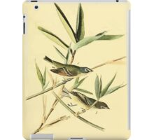 James Audubon Vector Rebuild - The Birds of America - From Drawings Made in the United States and Their Territories V 1-7 1840 - Solitary Vireo or Greenlet iPad Case/Skin