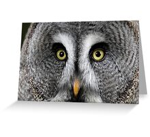 You'll blink before I do Greeting Card