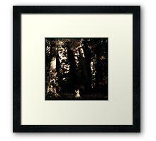 Forest Dance Framed Print