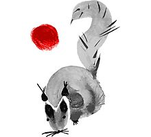 watercolor squirrel. Watercolor hand drawn brush vector  Photographic Print