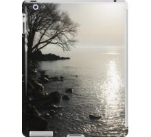 A Bright New Day iPad Case/Skin