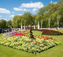 Beautiful Buckingham Palace Flower Beds in Spring by DonDavisUK