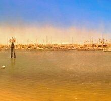 Balboa by Steve Walser