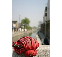 Chinese mop Photographic Print