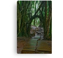 Doorway To The Enchanted Rain Forest Canvas Print