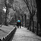 Blue Umbrella by Sophie Matthews