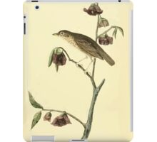 James Audubon Vector Rebuild - The Birds of America - From Drawings Made in the United States and Their Territories V 1-7 1840 - Dwarf Finch iPad Case/Skin