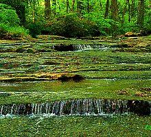 Gilbreath's Creek by Lisa Taylor