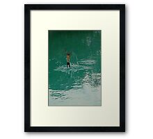 Swallow In Flight Framed Print