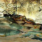 Nelson Bay........ by Imi Koetz