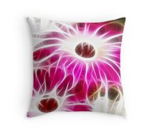 Fracalicious Livingstone Daisies Throw Pillow