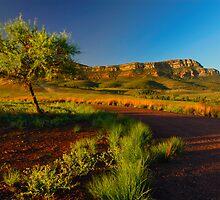 Flinders Range by Thomas Peter