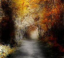 This Path I Have Taken .............. by bamagirl38
