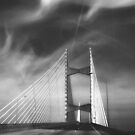 Dames Point Bridge in Black and White by designingjudy