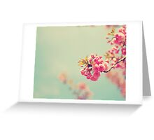 Cherry Spring Greeting Card