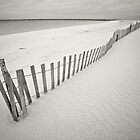 Fenced Beach by Jesse J. McClear