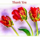 Thank You With Eye Catching French Tulips by daphsam