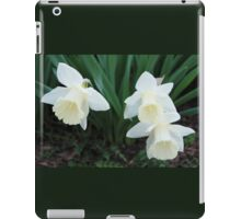 Three White Daffodils iPad Case/Skin