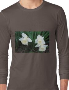 Three White Daffodils Long Sleeve T-Shirt