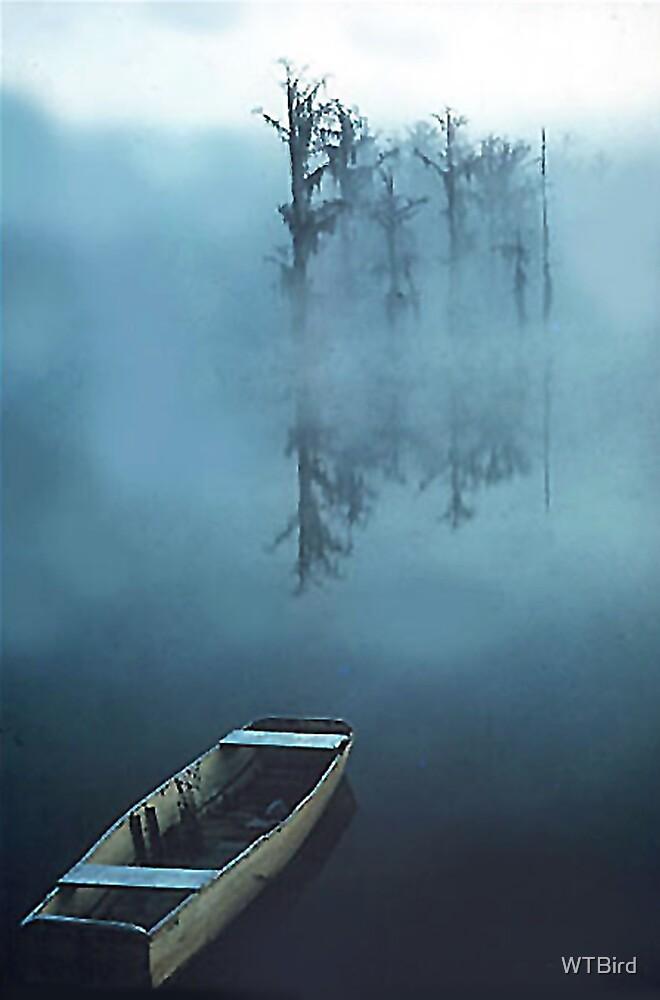 Misty Morn by WTBird