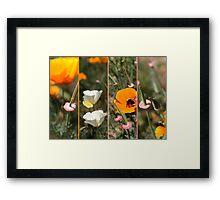 poppy bees & me Framed Print