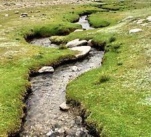 bodhi | ladakh landscapes by tim buckley | bodhiimages