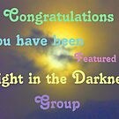 Light in the Darkness Banner by MaeBelle
