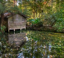 The Boatshed by Alex Stojan