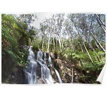 Toorongo water falls Poster
