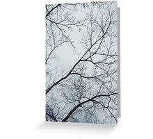 Tree Veins II Greeting Card