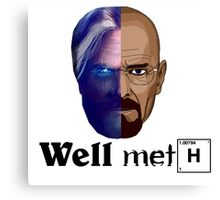 Well meth Canvas Print