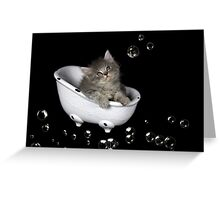 Dusty in the Tub Greeting Card