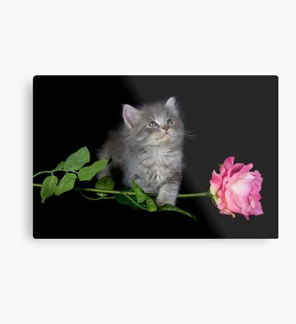 Dusty and the Rose Metal Print