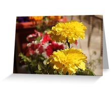 Yellow flower in a little garden Greeting Card