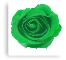 Green Rose Canvas Print