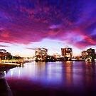 """Maroochydore by Phineous """"Flash""""   Cassidy"""