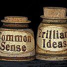 Common Sense & Brilliant Ideas by MichelleR