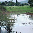 Neighbours farm with lagoon!!! by Heabar