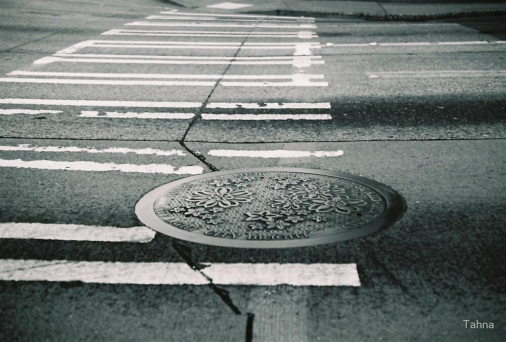 Crossing the Street by Tahna