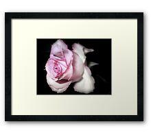 Pink Mist Framed Print
