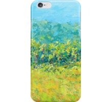 Friendlander View Landscape iPhone Case/Skin