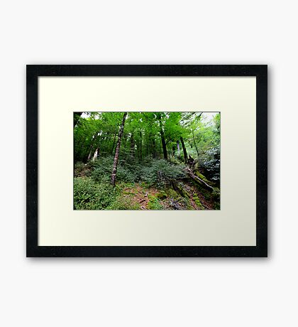 Lord of the Rings Country Framed Print